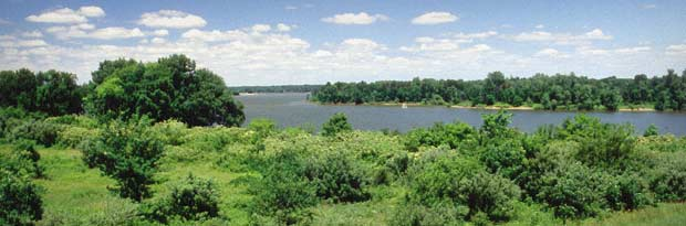Delaware State Park is one of many campgrounds with disc golf courses in the area.