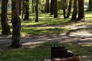 Campgrounds with disc golf courses: Hickory Run State Park, PA