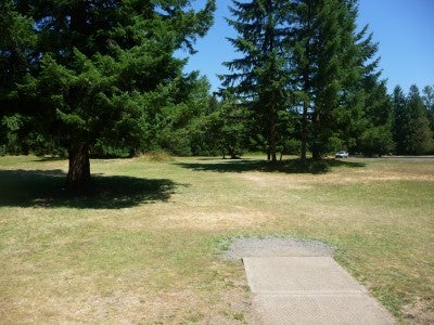 Campgrounds with disc golf courses: Milo McIver State Park, OR