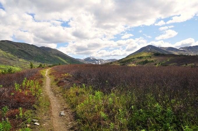 Juneau Lake Cabin camping