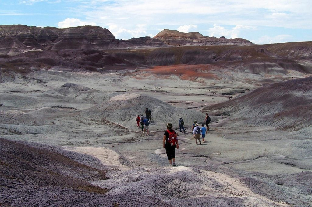 petrified forest national park camping