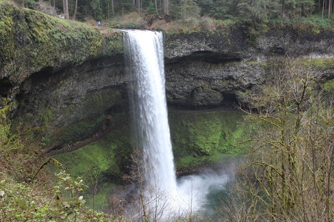 silver falls pacific northwest camping