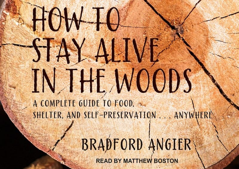 How to Stay Alive in the Woods audiobook cover