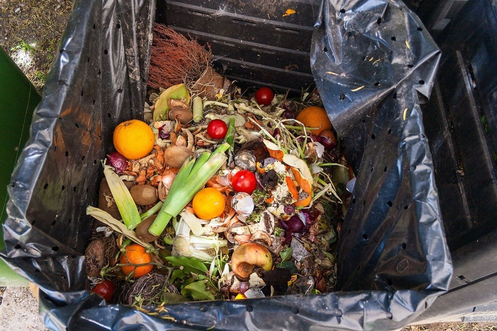 fruit and vegetable scraps in a waste bin