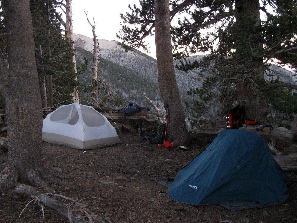 san gorgonio wilderness camping