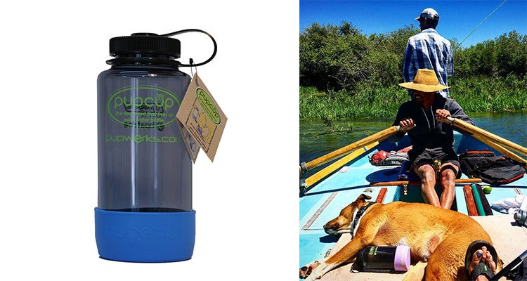 Camping gear for dogs: PupCup