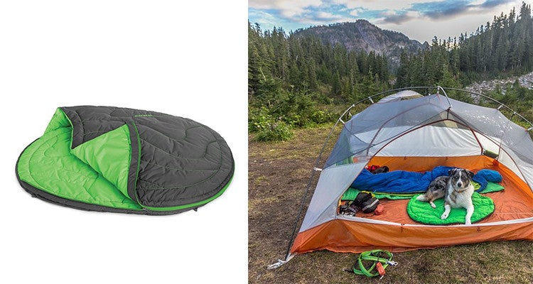 Dyrtdogs Wish List The Best Camping Gear For Dogs