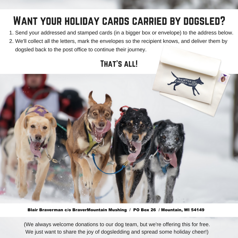 Holiday mail by dog sled