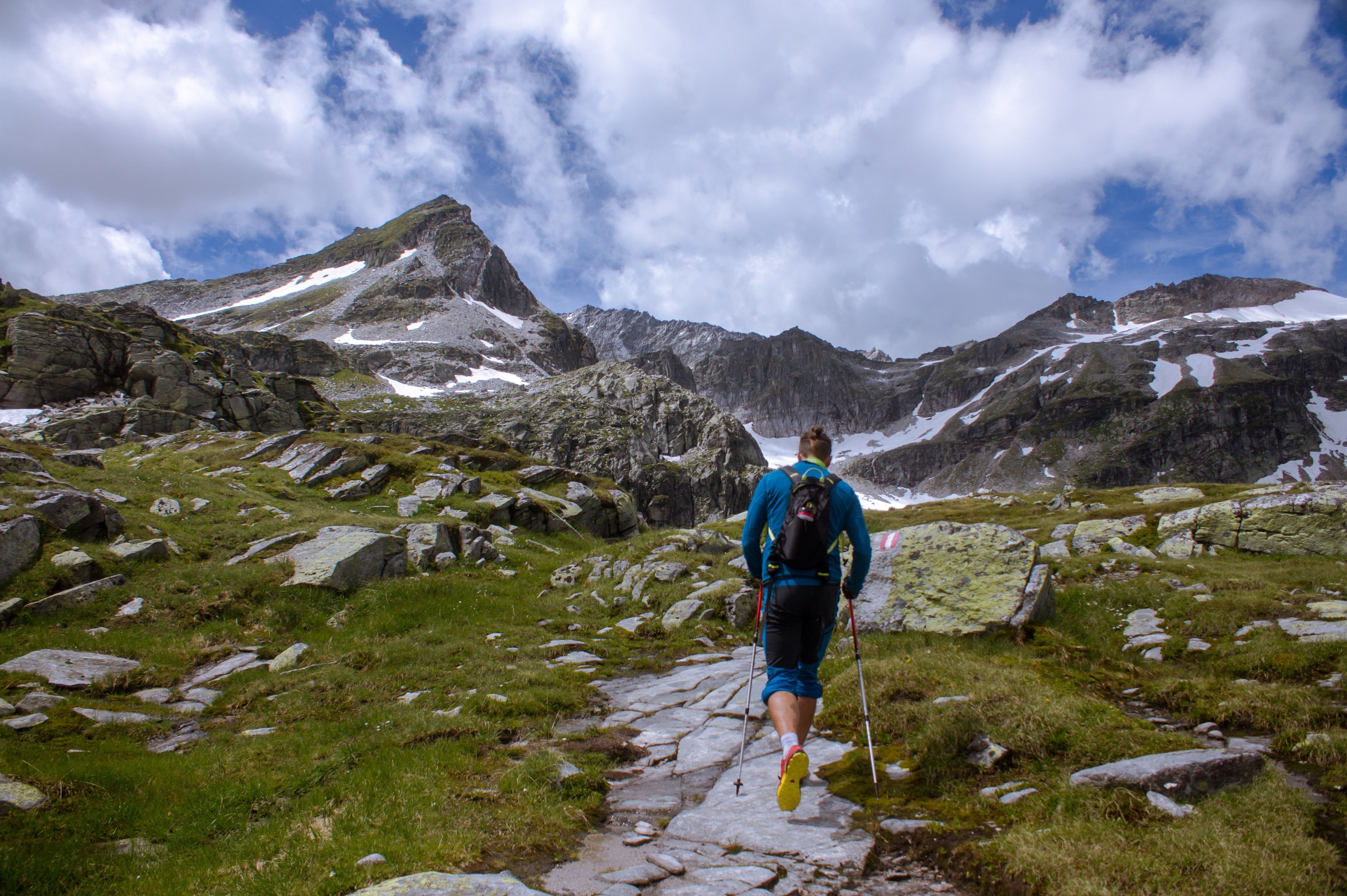 backcountry essentials trekking poles