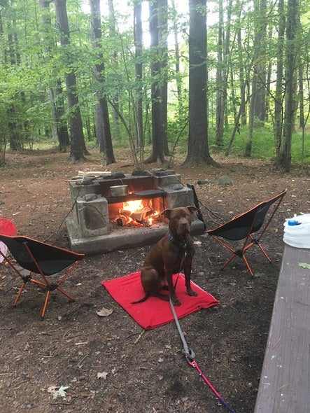 Dog-friendly campgrounds: Kenneth L Wilson