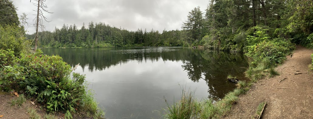 a lake in rural oregon in the woods