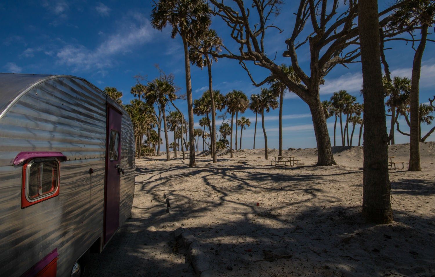 Full-Time Campers: Wild Animals and Coastal Camping in ...