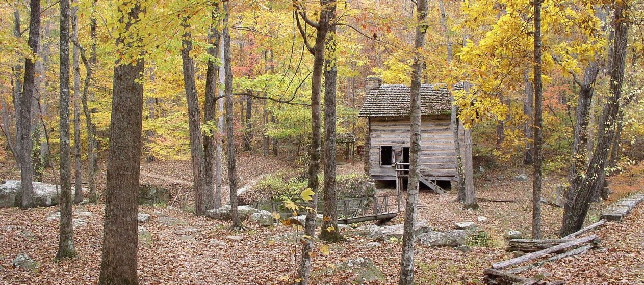 Image result for woods and mountainswith shack