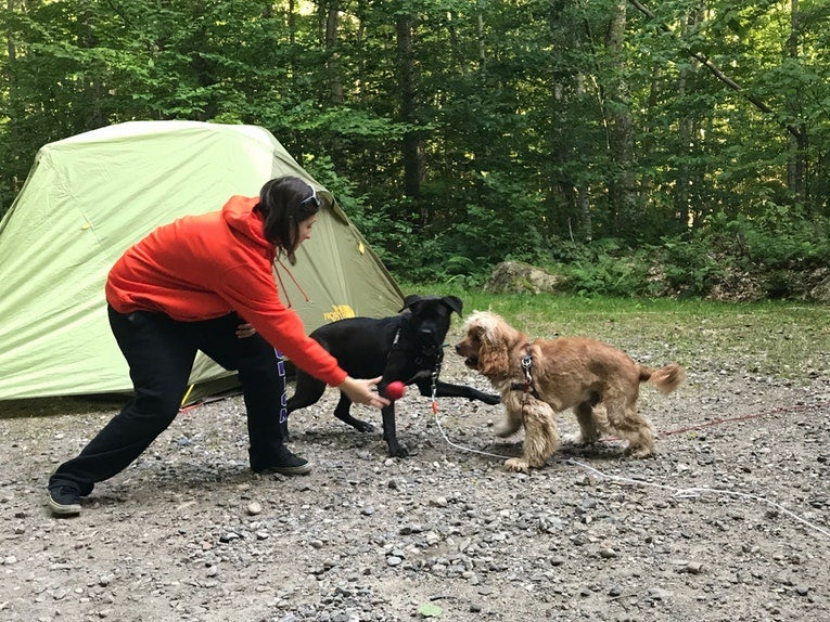 Dog-friendly campgrounds: Cranberry Lake