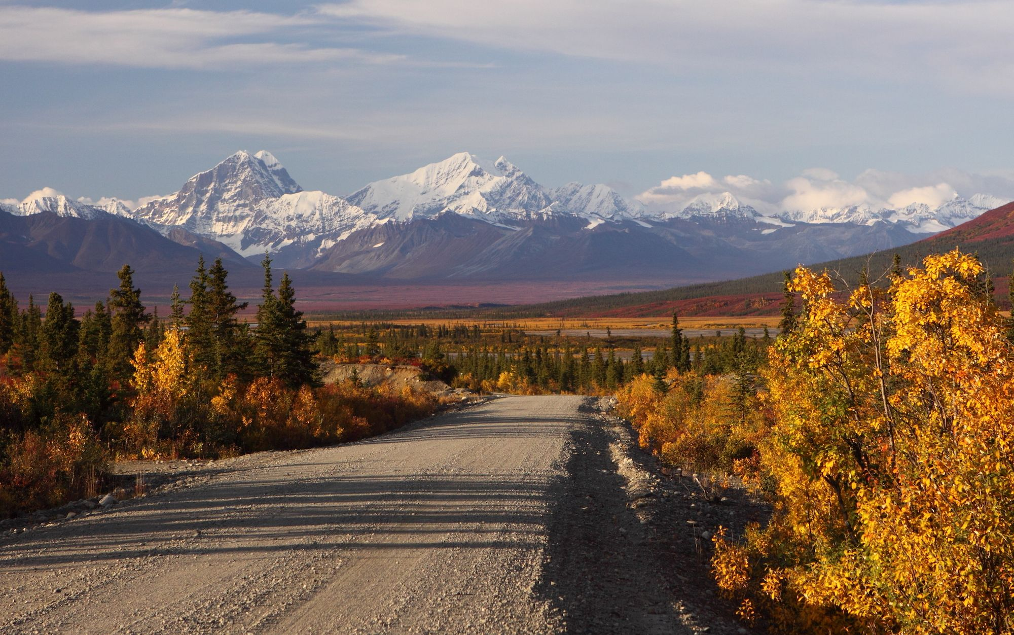 snow-covered denali visible in the distance from the denali park road in autumn
