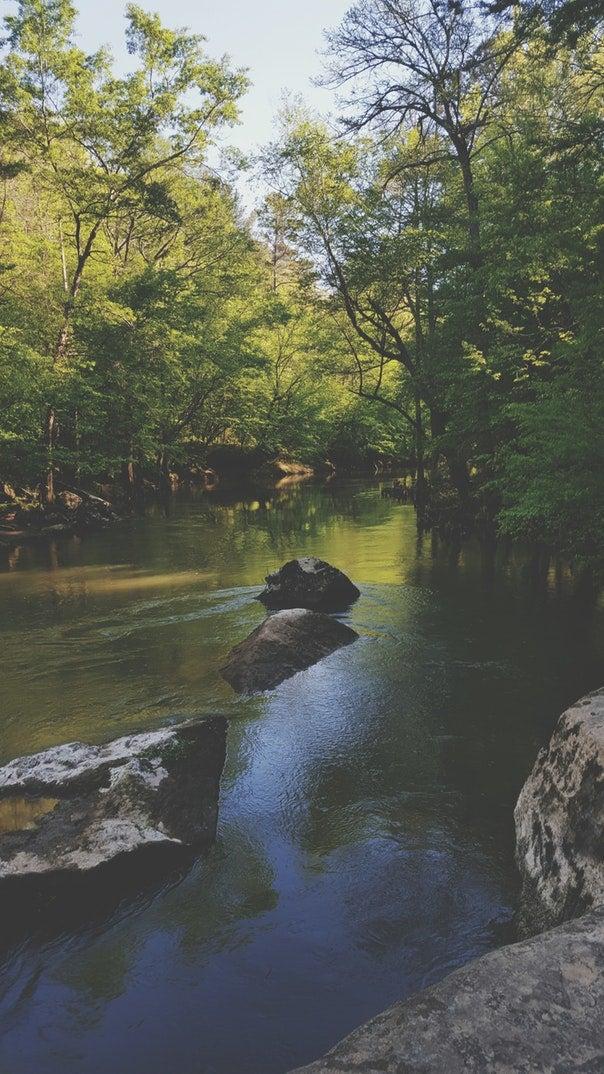 Tishomingo State Park river