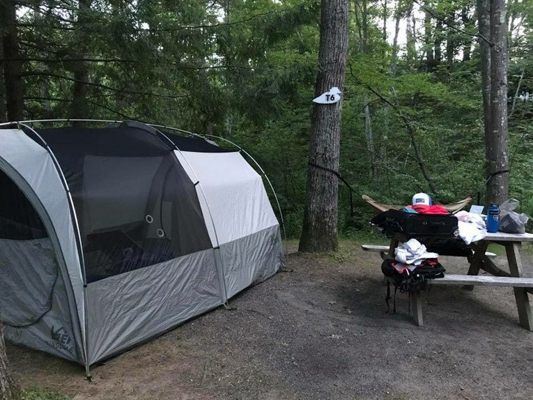 These dog-friendly campgrounds are a perfect place to pitch a tent.