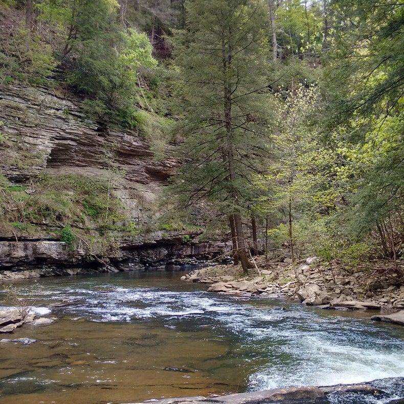 falls creek falls state park