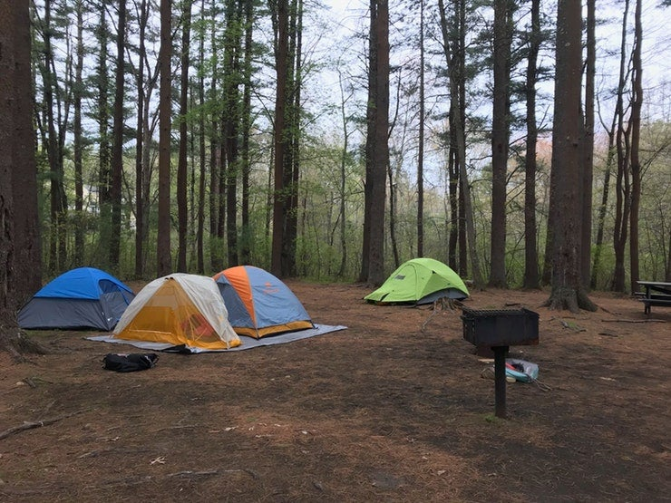 tips to pick the best campsite