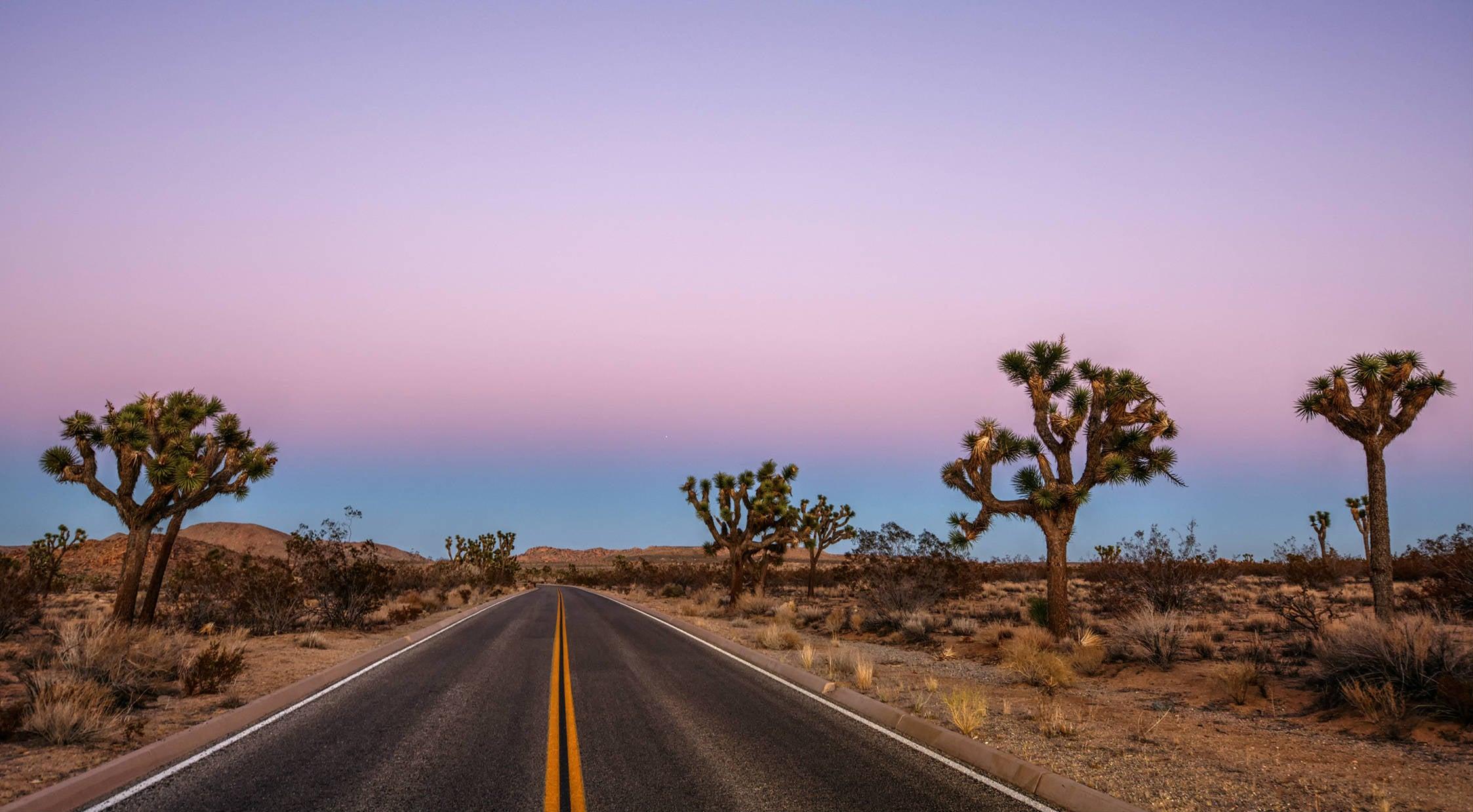 road to joshua tree national park