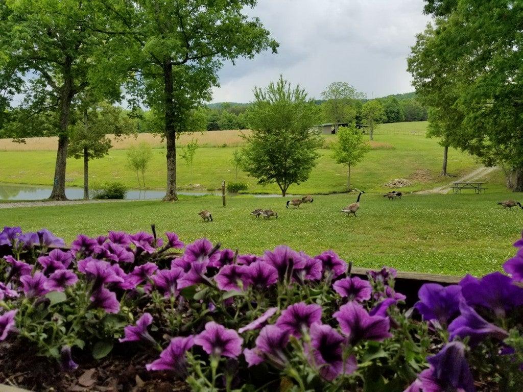 Mountain Glen RV Park Fall Creek Falls Tennessee