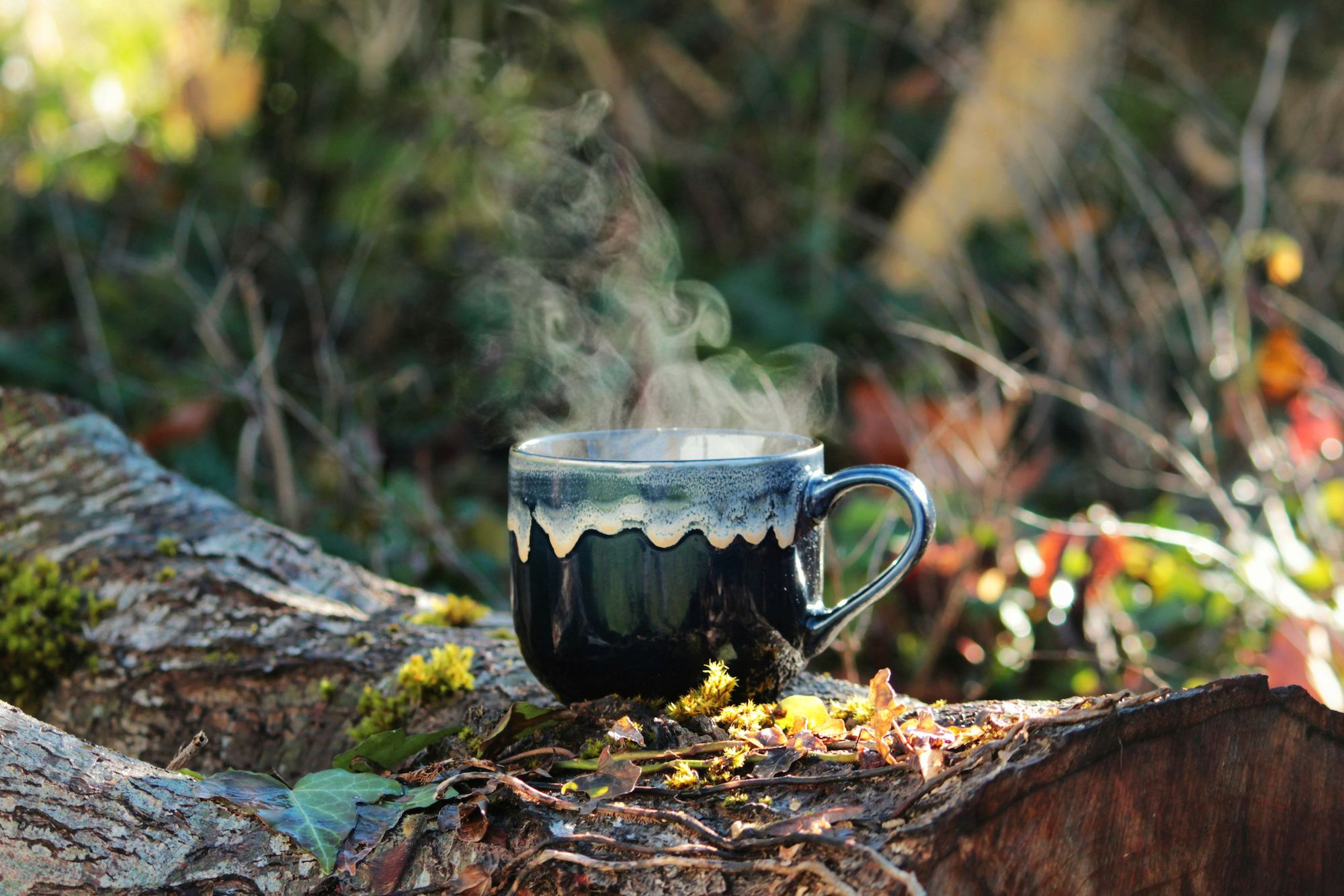steaming mug of coffee rested on log in forest