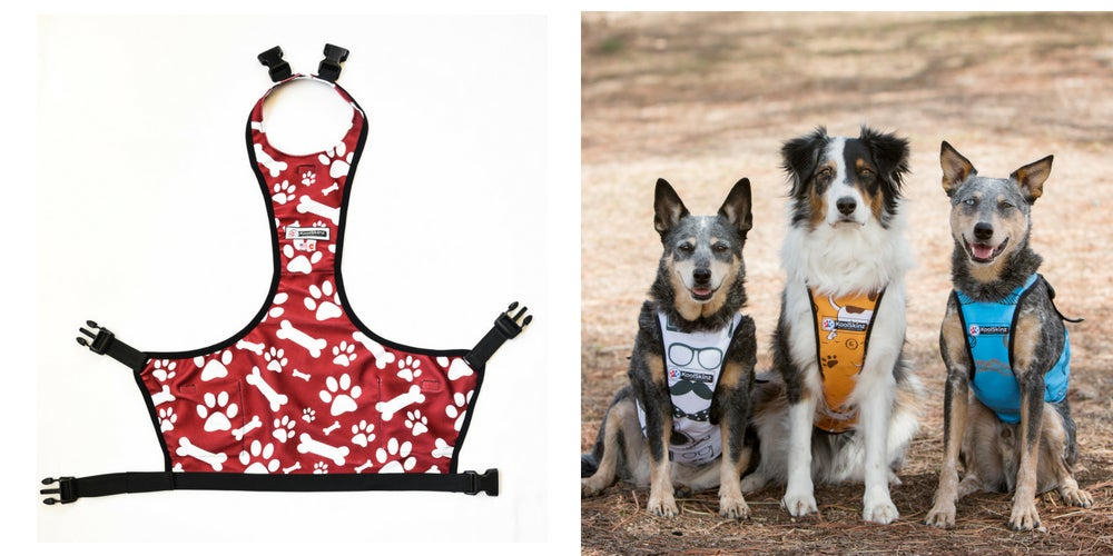 camping gear list: koolskinz pet vest