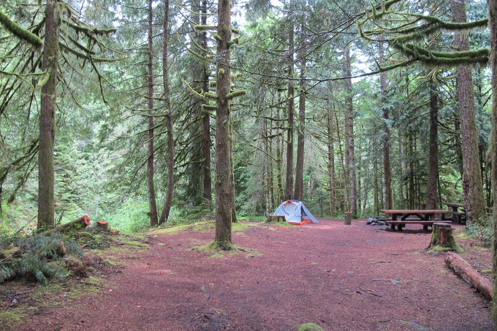 camping without a car in Still Creek Campground