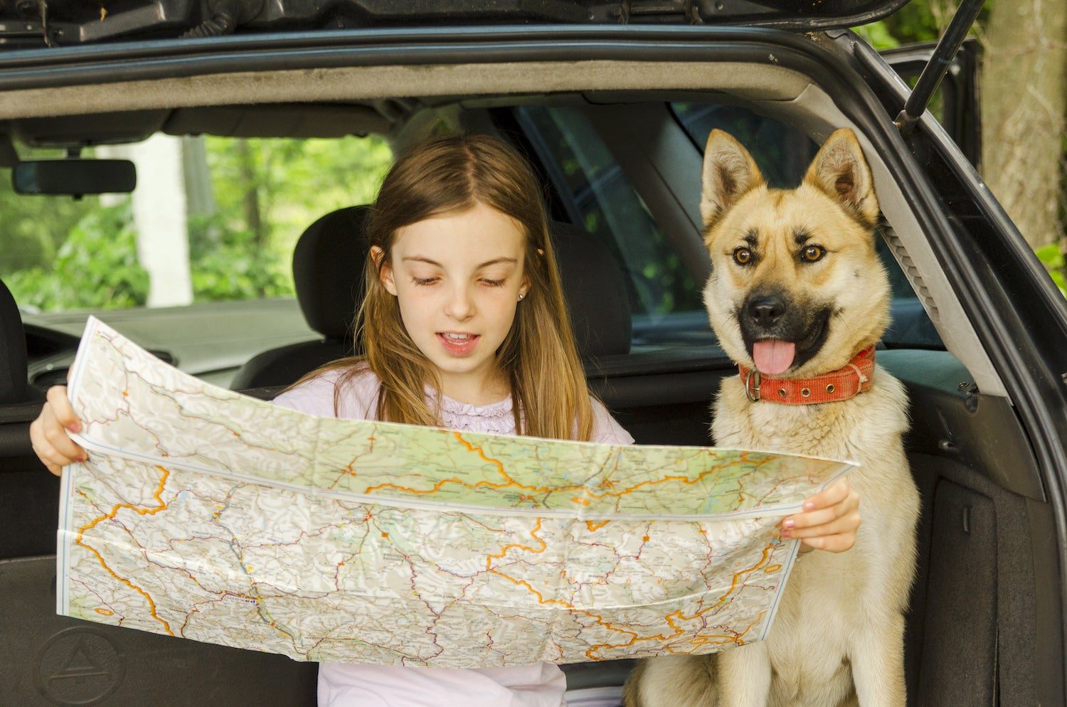 young girl reads map in car with dog on leave no trace trip