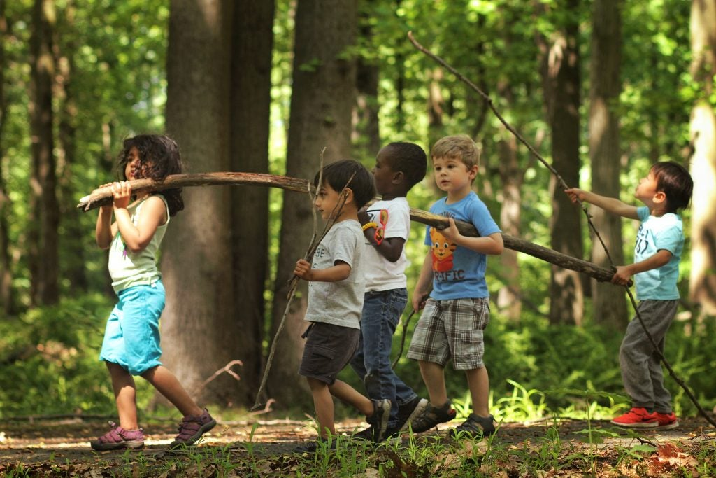 a group of young children hauling a large stick in the forest, via hike it baby