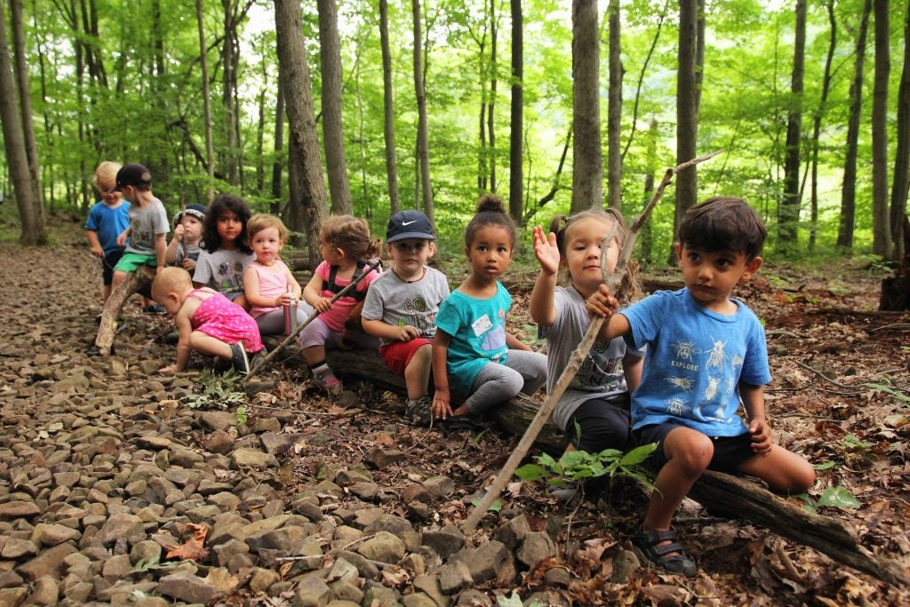 11 young children sit in a row on a log in the forest, via hike it baby