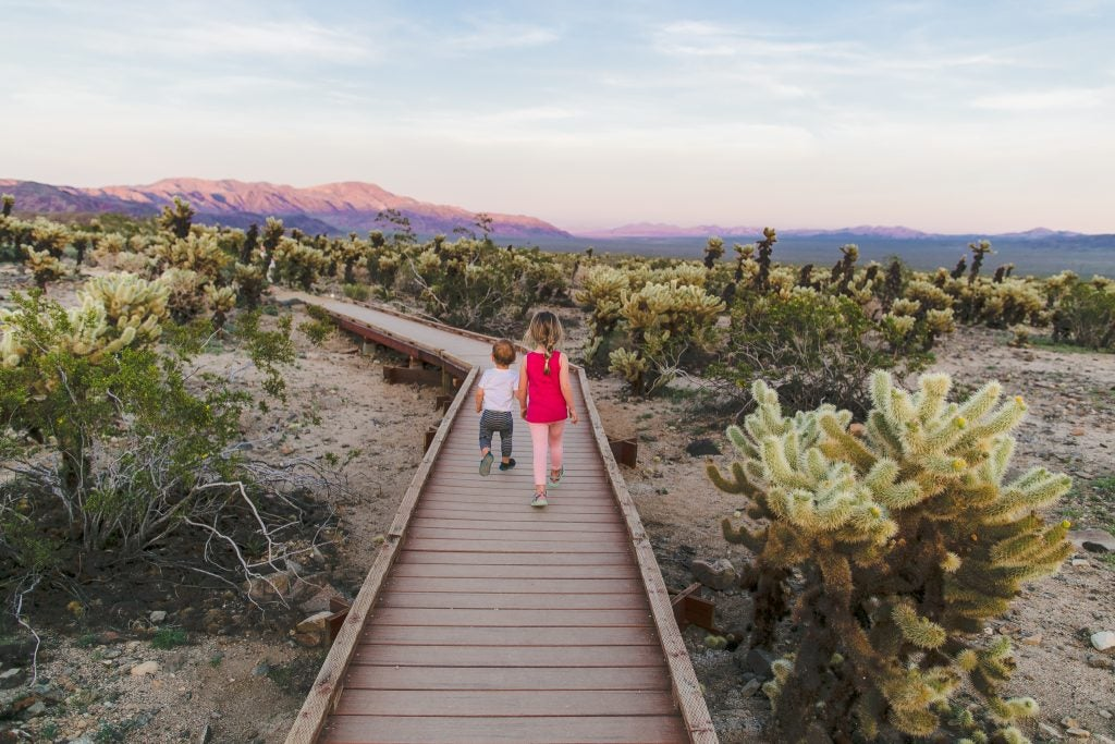 from behind: young brother and sister walk desert path at sunset, via hike it baby