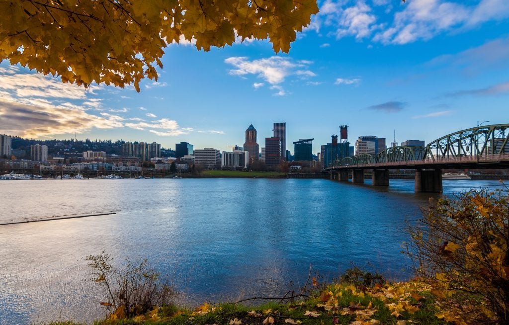 fall trees frame portland's willamette river