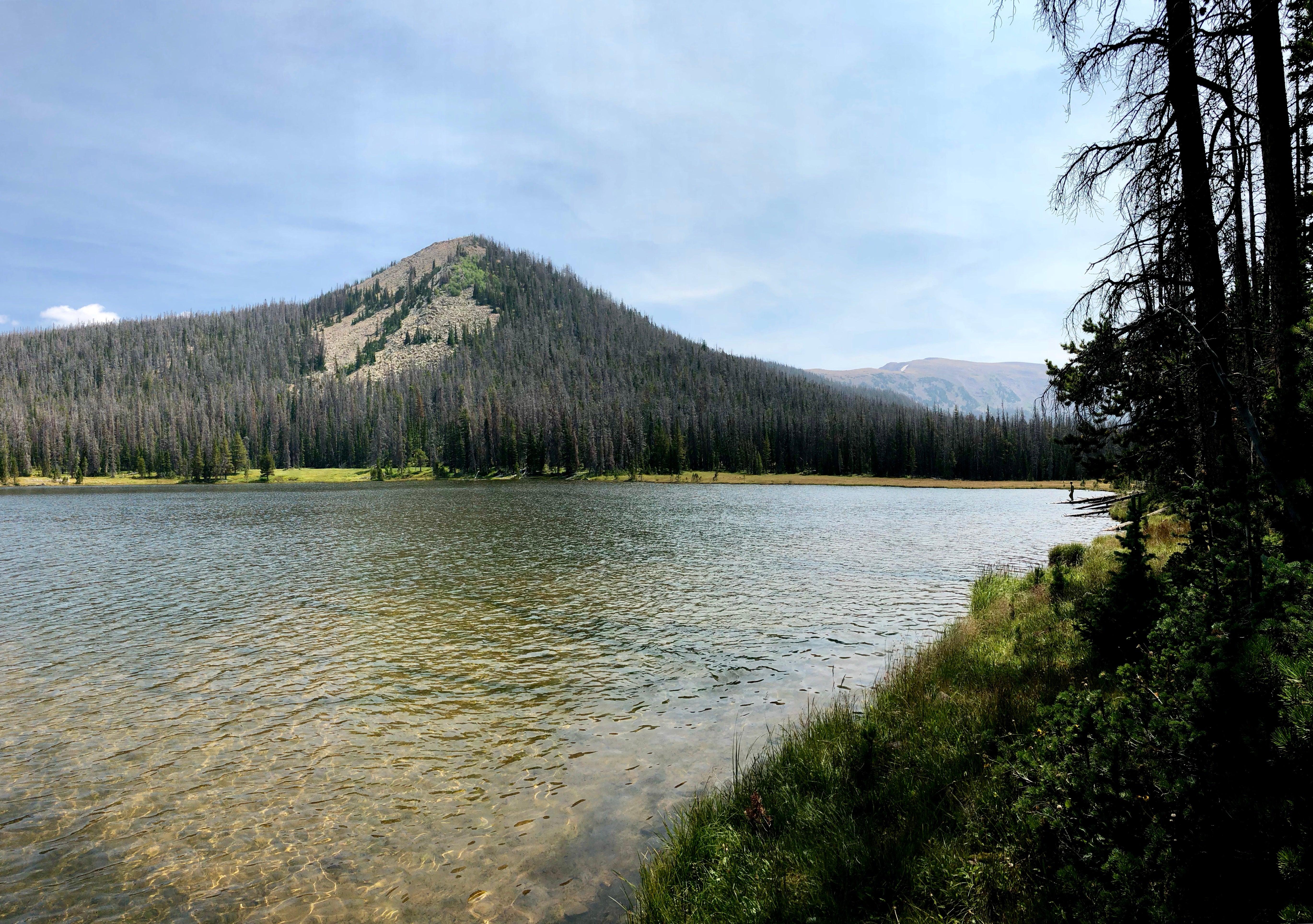 waterfront alpine lake views at scow lake