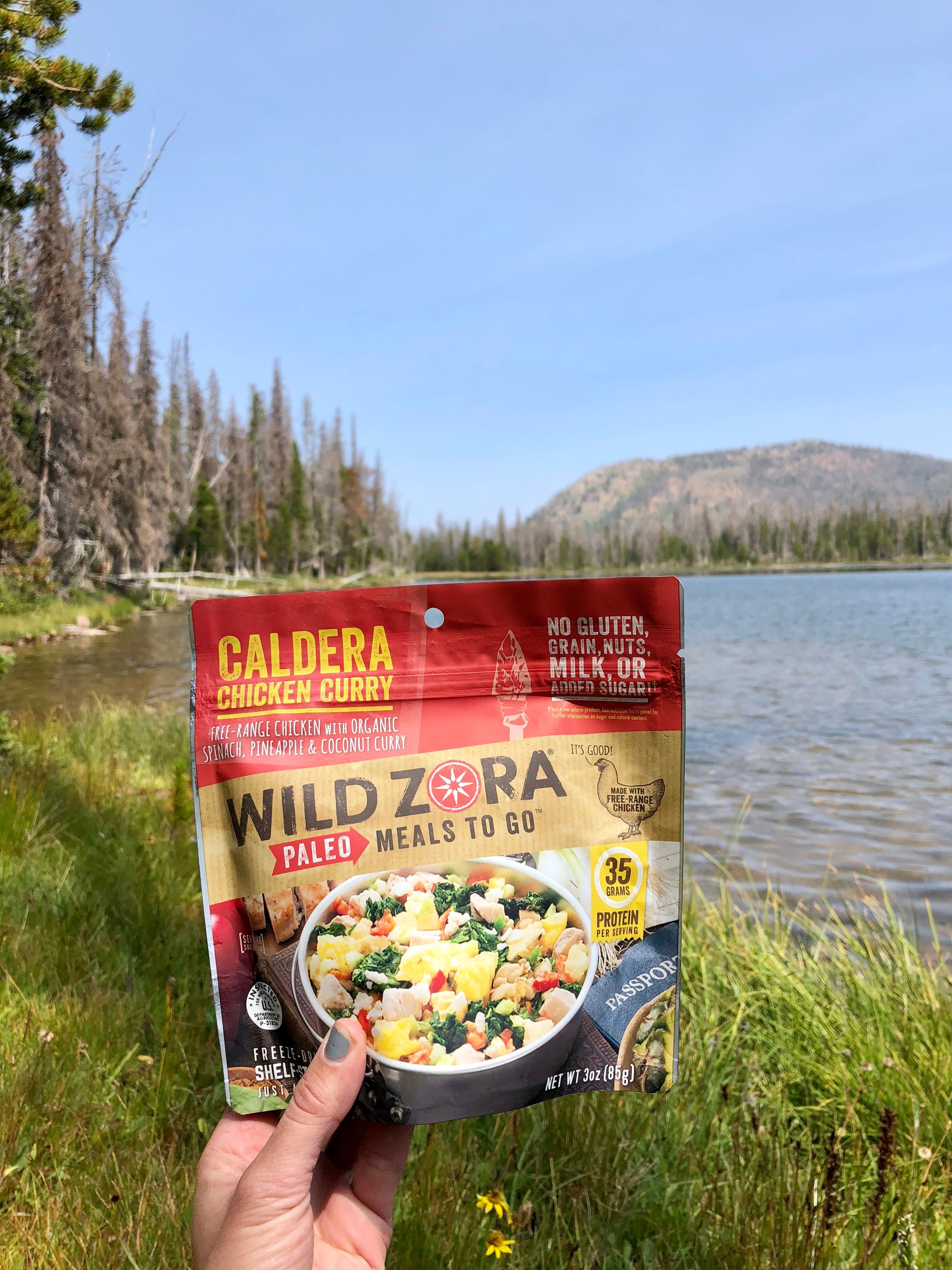 chicken curry meal to go at an alpine lake
