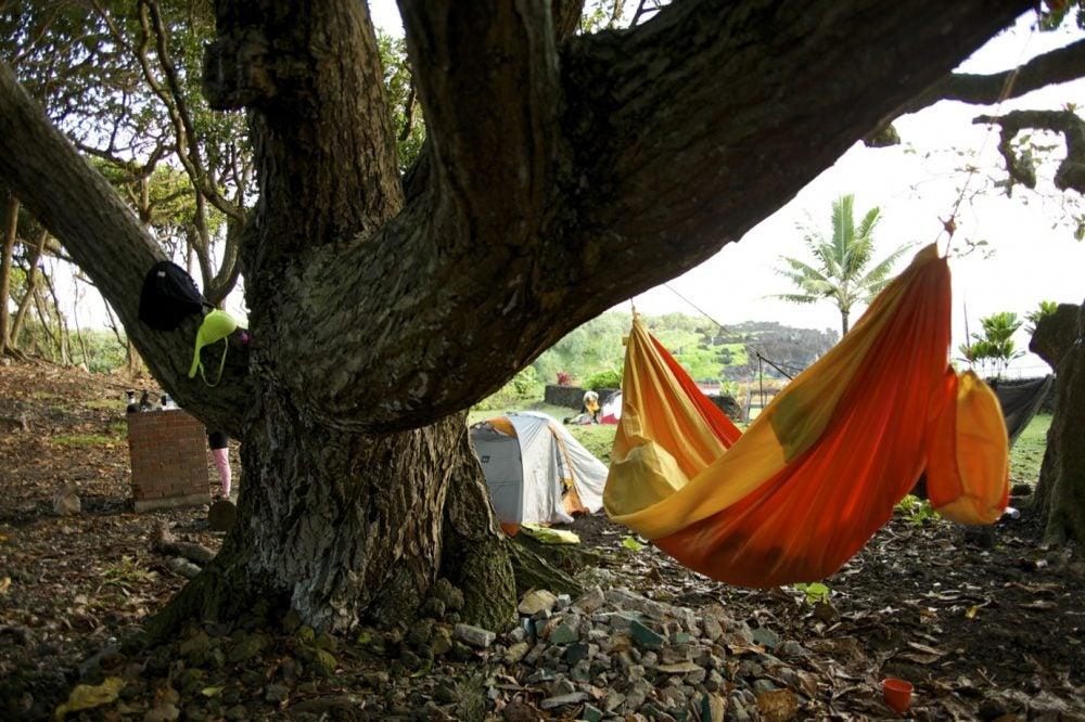 camping in maui at waianapanana