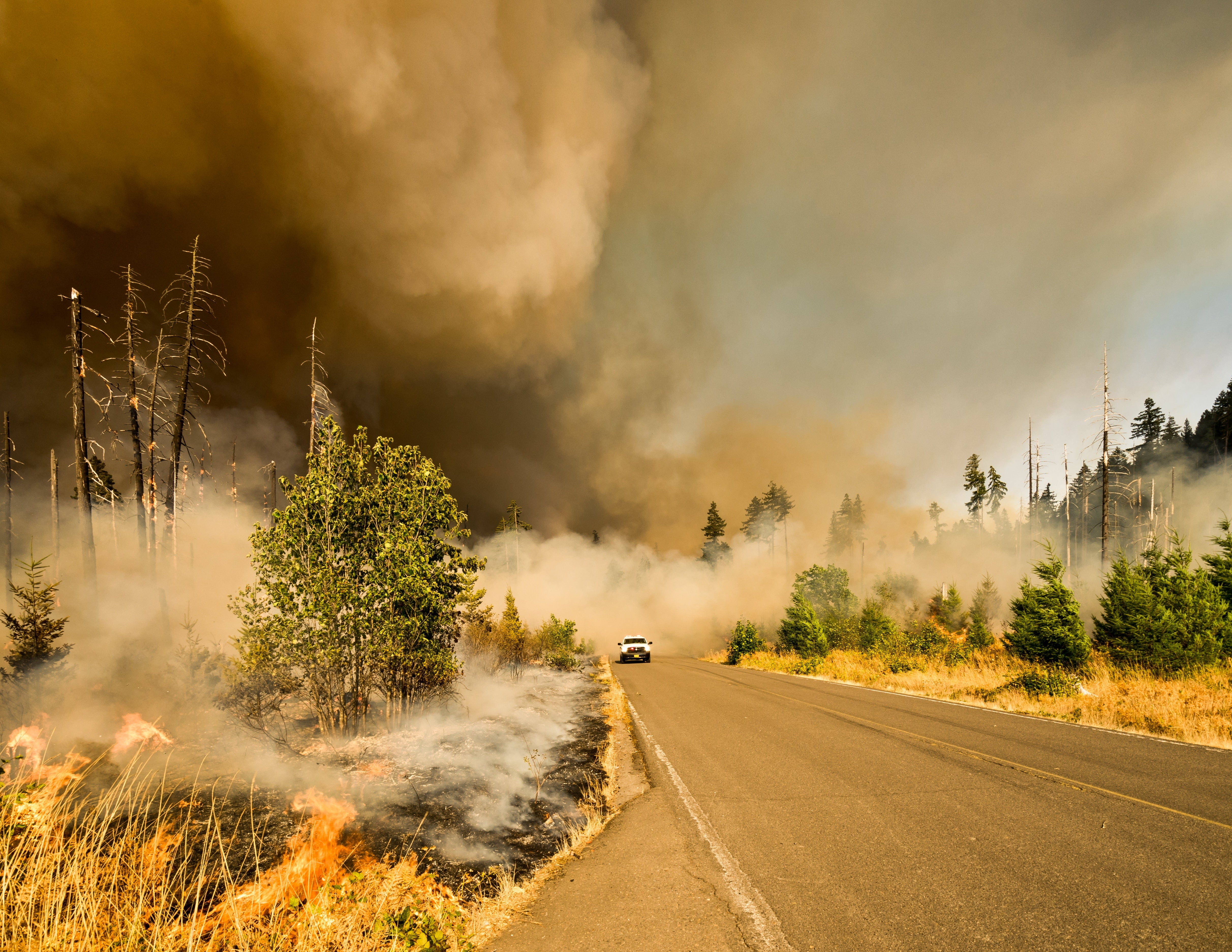 can you camp during wildfire season