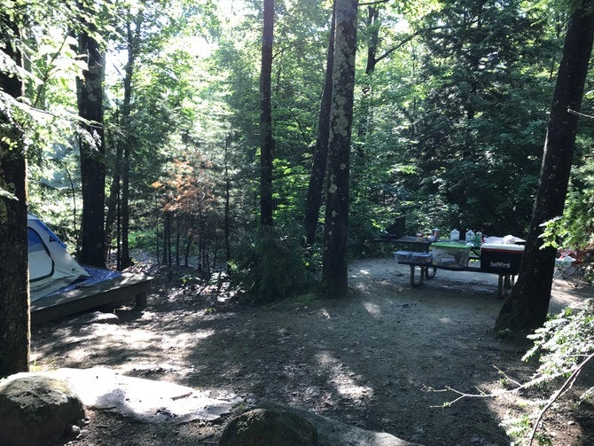 remote site at monadock state park campgrounds in new hampshire