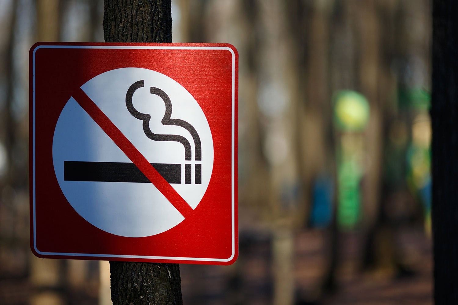 no smoking sign to avoid wildfire