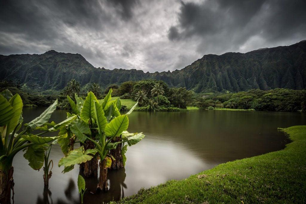 hurricane lane in oahu, hawaii