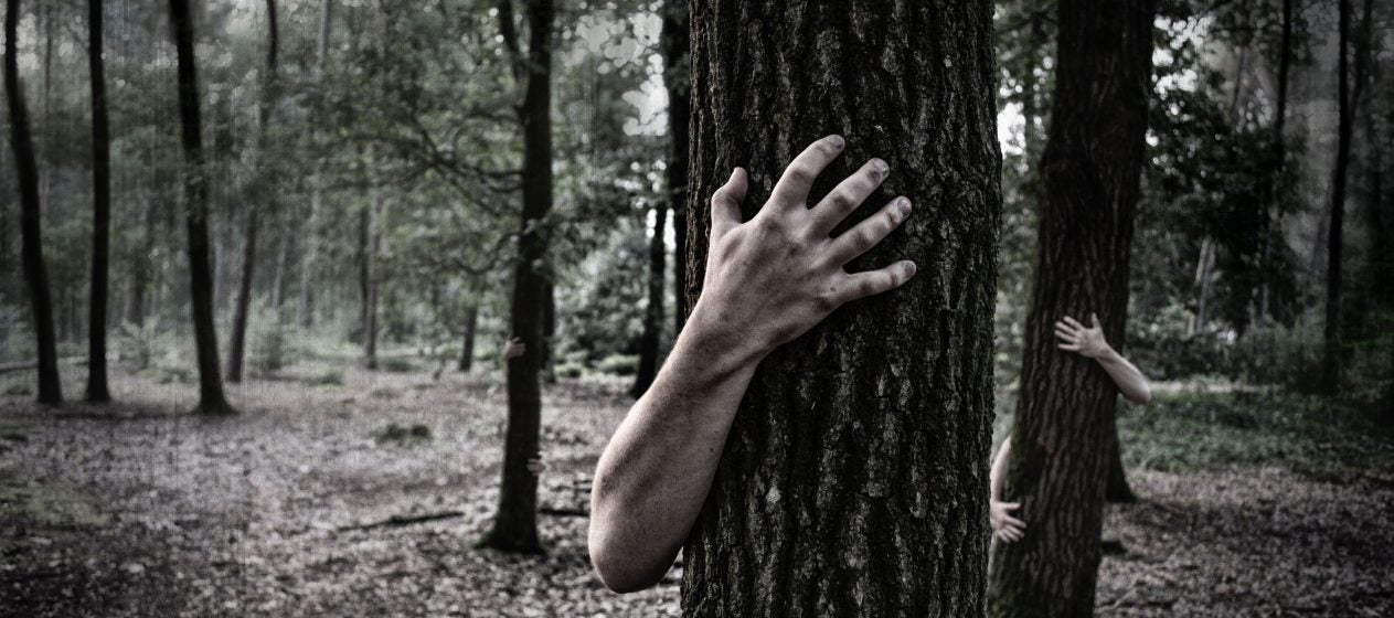 Top 10 Scary Forest Ranger Stories