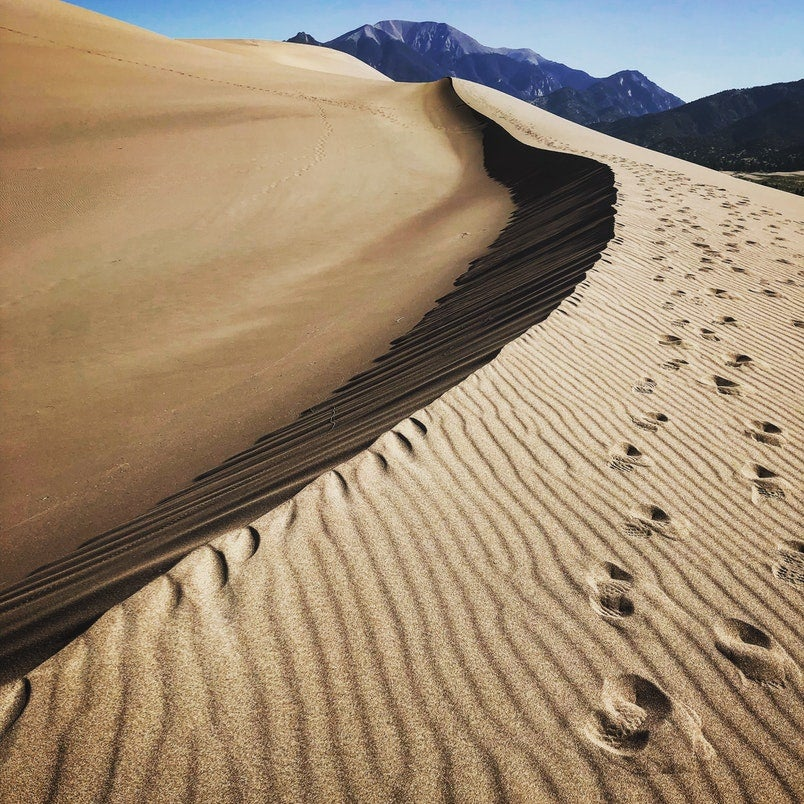 mythical beasts live here: great sand dunes with footprints visible