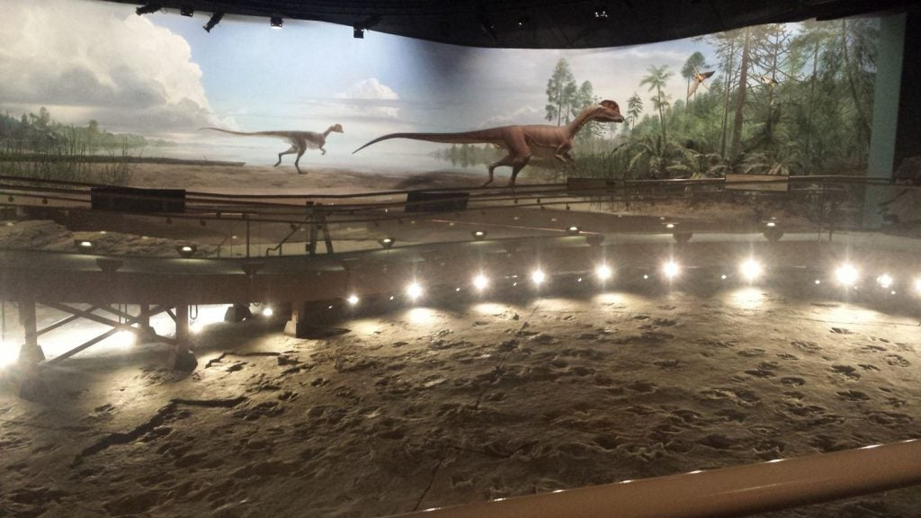 preserved dinosaur tracks with artistic recreation of the scene behind them