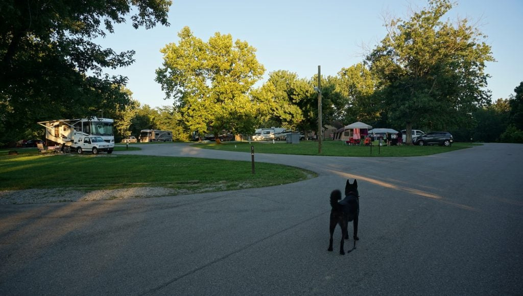 big bone lick campgrounds in kentucky