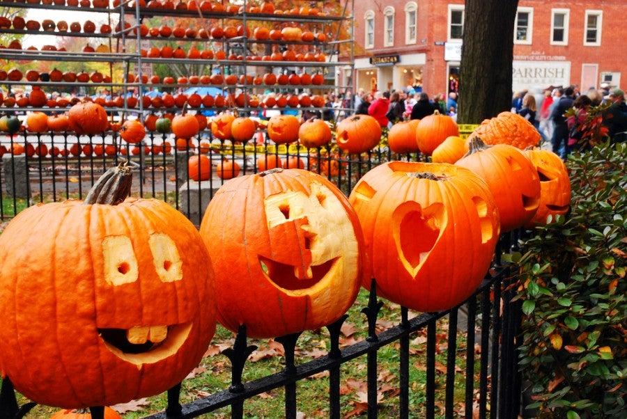 pumpkins arranged on a metal fence at a new hampshire pumpkin festival