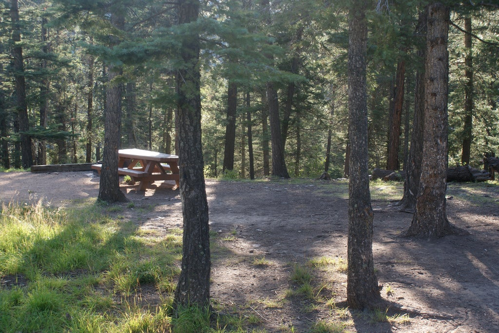open site at jacks creek campground and rv parks in santa fe