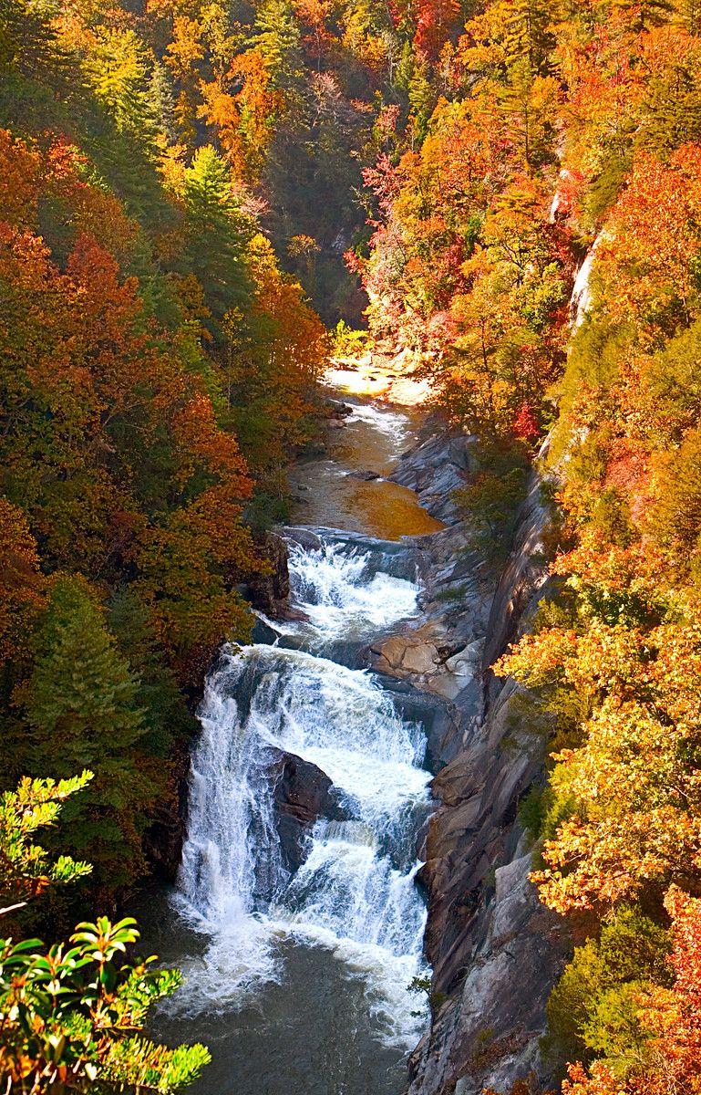 Tallulah Gorge fall foliage