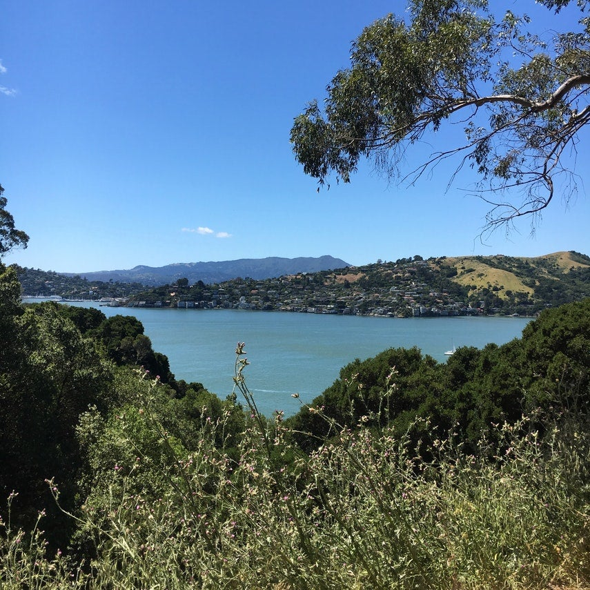 angel island in the san francisco bay