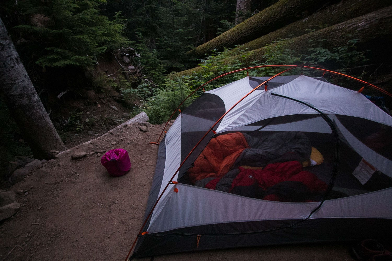 Carbon River Campground - Hiking the Wonderland Trail, Mount Rainier National Park