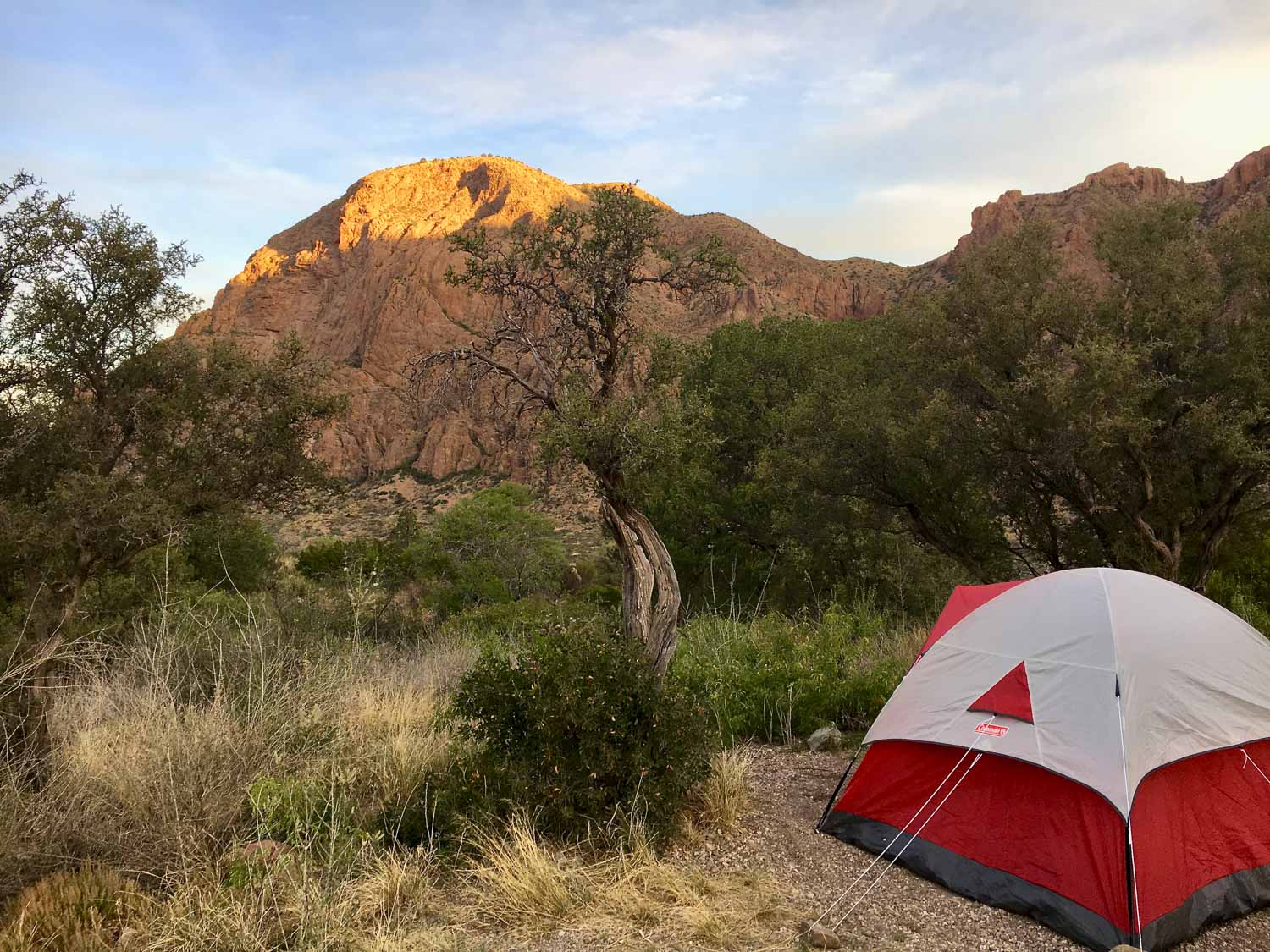 red tent faces mountain in big bend's chisos basin